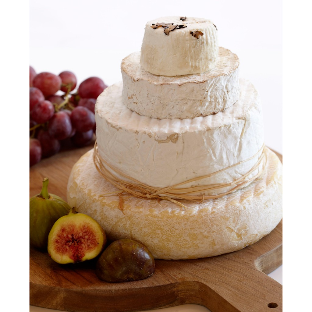 Decadence Wedding Cheese Cake Square