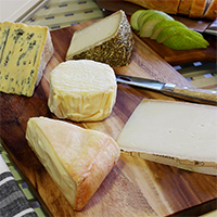 Beginners Cheese Selection